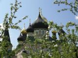 Holy Virgin Convent in Kiev Domes of the Protection of the Virgin Church and St. Nicholas Cathedral