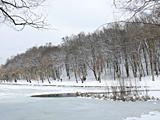 Kyiv. Frozen lake in the Goloseevskiy park